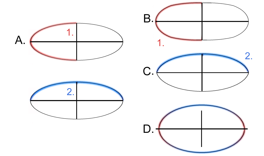 ellipses5