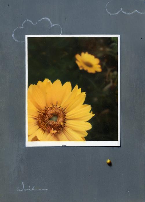 Spring, 7×5″, Oil